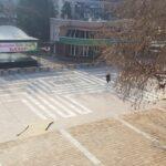 """Площад """"България"""" приюти първите мартеници"""