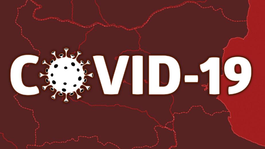 virus-3.jpg
