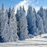Жълт код за ниски температури в 19 области