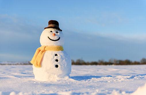 На 18 януари се празнува международният ден на снежния човек