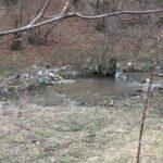 В събота: Чистим Стара река от Пещера до Батак, включете се