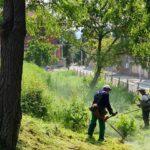 Косенето на тревните площи, миенето на улици и освежаване на Пещера продължават