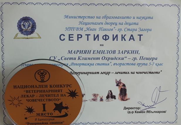 sertifikat-gimnazya.png