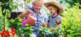 На 23 юли се чества Световният ден на бабата