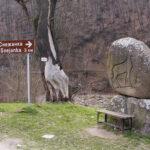 Отворен за движение е пътят до пещера Снежанка